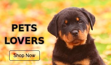 All pet item online shopping with http://www.justdelivr.com/