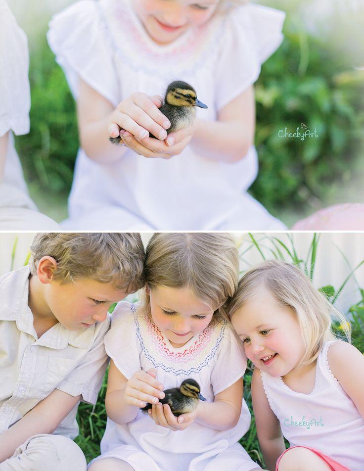 Spring | Ducklings www.cheekyart.co.nz