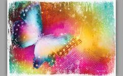 fototapet fluture curcubeu