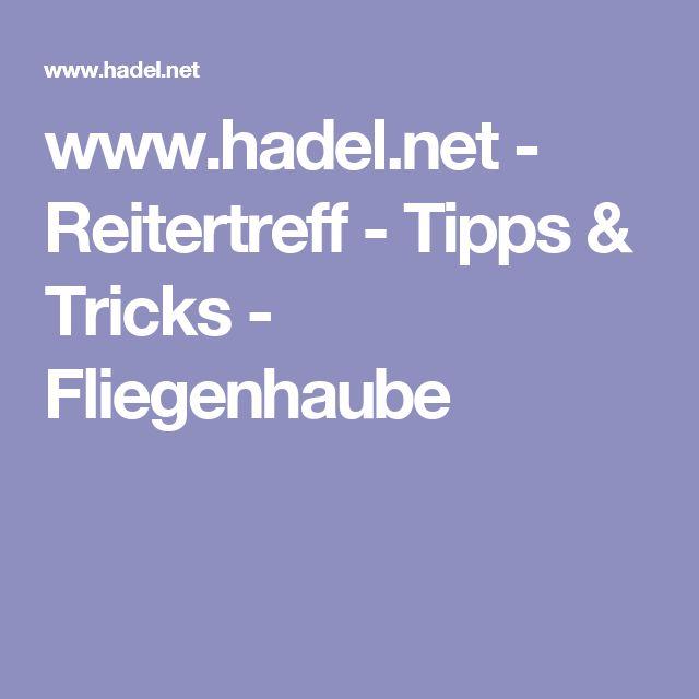 www.hadel.net - Reitertreff - Tipps & Tricks - Fliegenhaube
