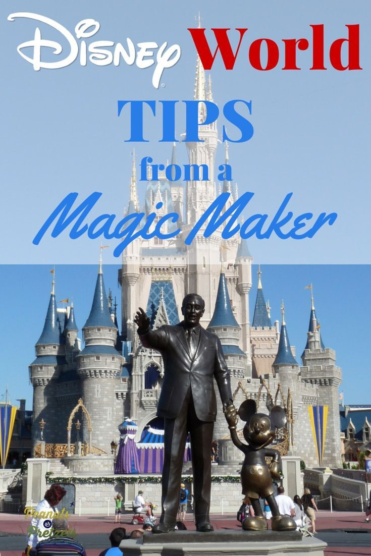 "Walt Disney World is the ultimate dream for most families who are looking to go on vacation, and having a handful of Walt Disney World Tips can really make your trip special. Being the Disney fans that we are (and having spent years ""working for the Mouse"" myself), here are our top Walt Disney World Tips for other travelers! 
