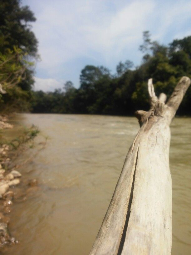 Sungai Gerpa