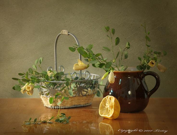 Выжатый лимон.