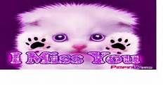 Cute Kittens images cute kitten sad HD wallpaper and background photos ...