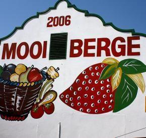 Mooiberge Farmstall | Stellenbosch | Cape Winelands