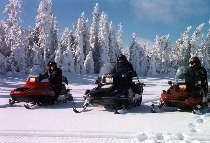 Laponie ... motoneige & traîneaux à chiens ...