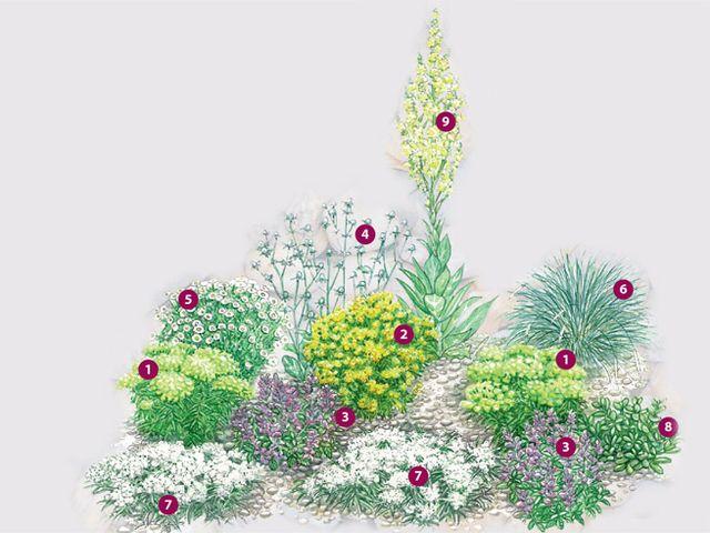 kiesgarten pflanzenpaket   falkenstr   pinterest   kiesgarten, Gartenarbeit ideen