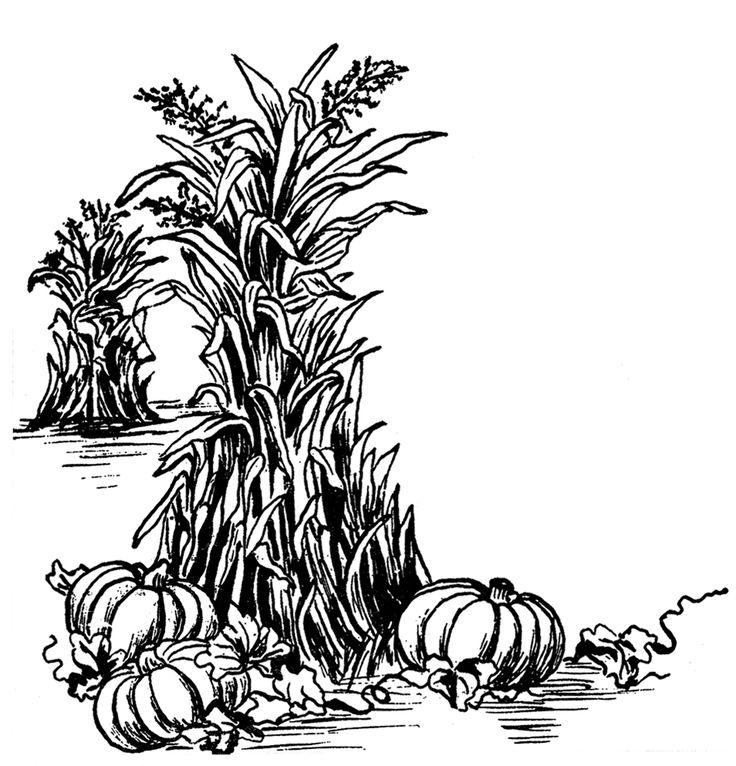 Fall Harvest Clip Art The o'jays, Graphics and Fairies
