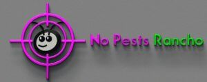 No Pests Rancho Cucamonga is a firm that provides pest removal and pest control solutions for the clients mainly in the area of Rancho Cucamonga. The pest exterminating and pest removal services that we offer can take care of most of the insects, rodents, bees, pest and other variety of wild animals. #Rancho Cucamonga ant exterminator #Rancho Cucamonga dead rodent #Fontana pest control