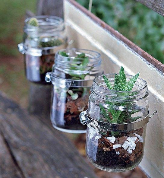 Por ter boca larga, os vidros de conserva são ótimos para a criação de terrários com suculentas. Produção de Camile Comandini. Foto: Revista Casa e Jardim