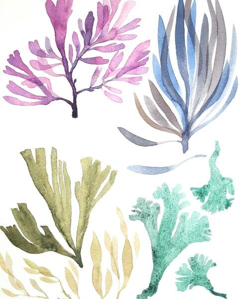Sea Things 2 The sea makes me happy... Sea grass, seaweed, coral  Painted by…