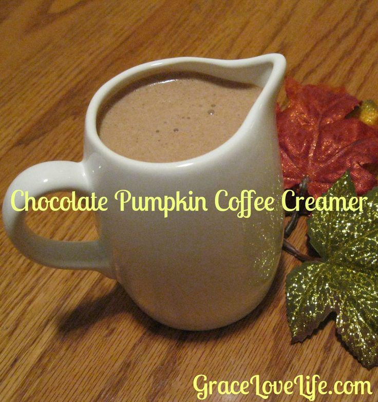 Chocolate Pumpkin Coffee Creamer.  Perfect for a cool fall day.  GraceLoveLife.com