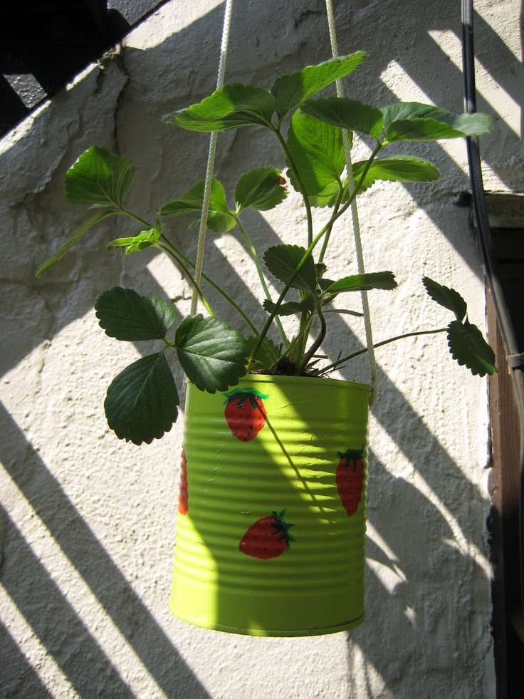 Decorate your can and put a mini fairy garden in it. Tie a longer rope or wire on it to hang it low enough for the little one to be able to see inside of it. Huge cans make bigger gardens. Hang on balcony or inside after the water drains from watering it or put newspapers below it to catch water. Imagine a few brightly painted cans with mini fairy gardens. How pretty and fun!