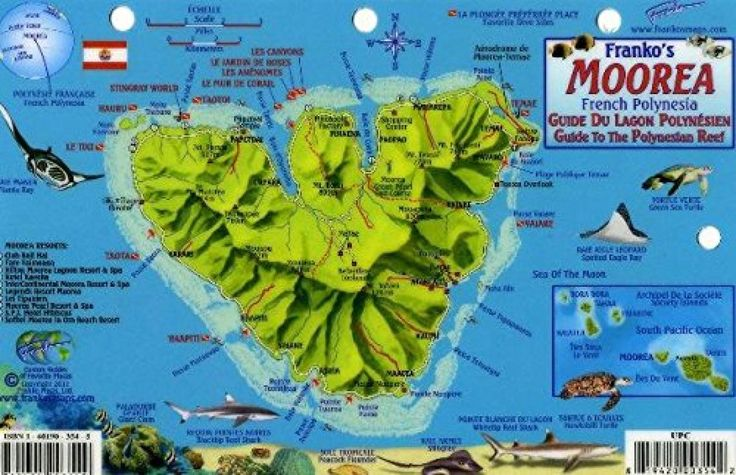 Moorea, French Polynesia, Guide to the Polynesian Reef by Frankos Maps Ltd.