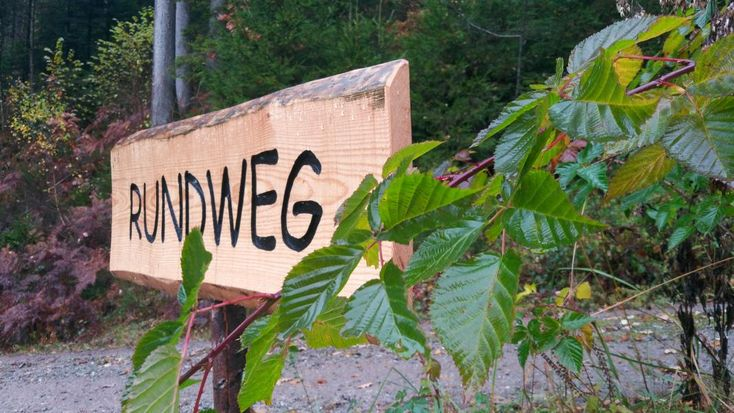 Ausflugstipp Schwarzwald: Alternativer Wolf- und Bärenpark Schwarzwald - DieCheckerin.de
