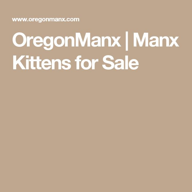 OregonManx | Manx Kittens for Sale