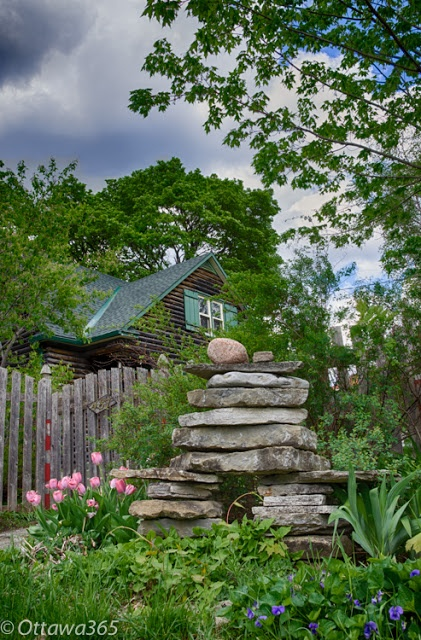 Ottawa seen 365 ways in 365 days: 309 - Tulips, Inukshuk and Cottage as seen in Westboro