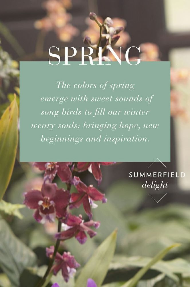 essay about spring time Read this short essay on summer season  in the northern hemisphere, summer is the warmest season of the year extending from the summer solstice through to the autumnal equinox this season introduces the raining season, because of the heat, water is evaporated and the vapours are safely stored in.