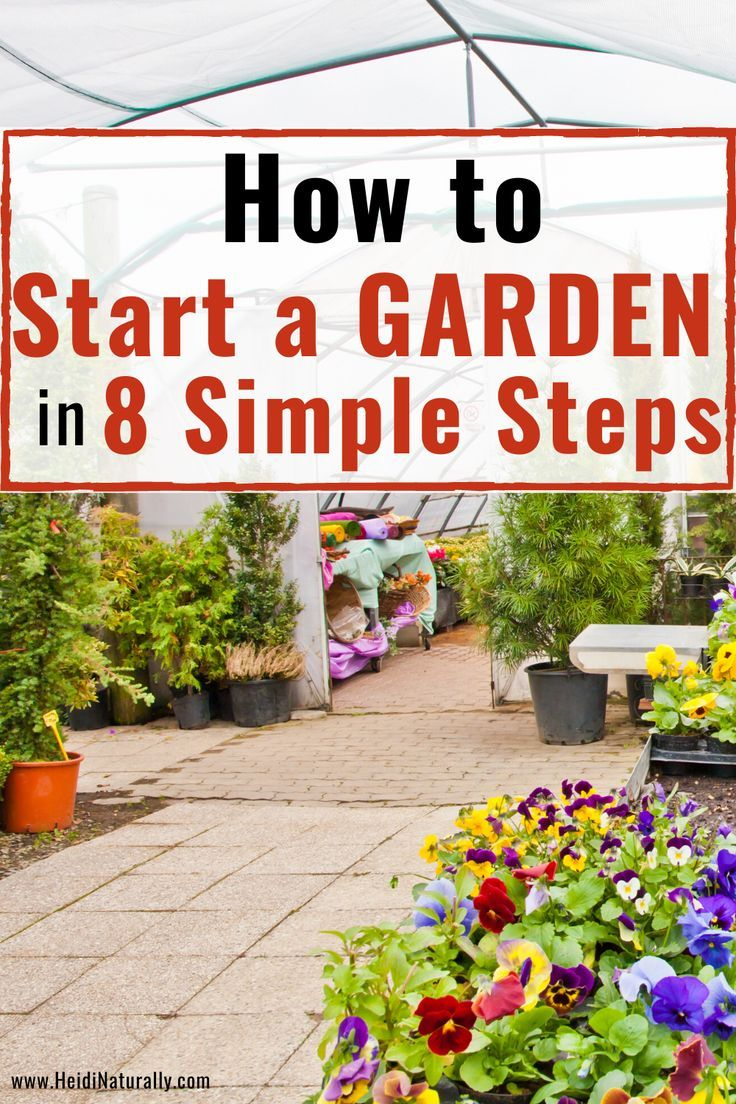 How To Grow Stuff Easy No Stress Gardening For Beginners
