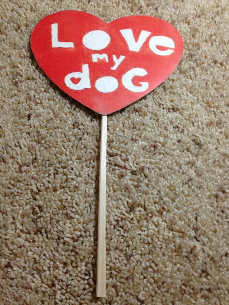 DIY photo booth props for a Dog party.