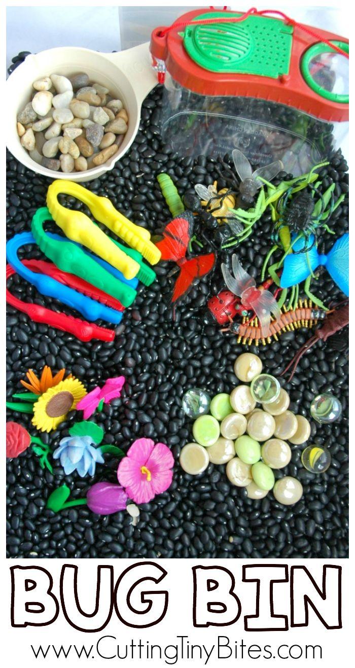 Insect Sensory Bin for Kids. Great fun for a preschool bug theme unit!