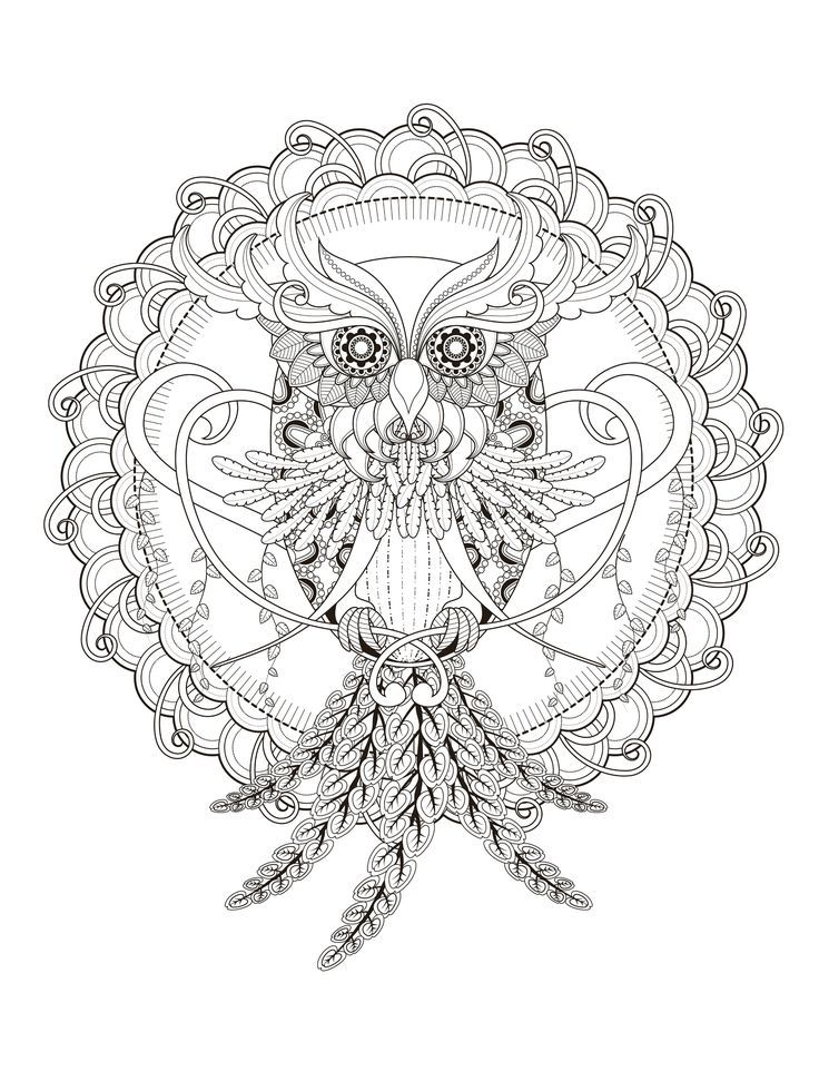 128 best animal coloring pages images on pinterest | coloring ... - Animal Mandala Coloring Pages Owl