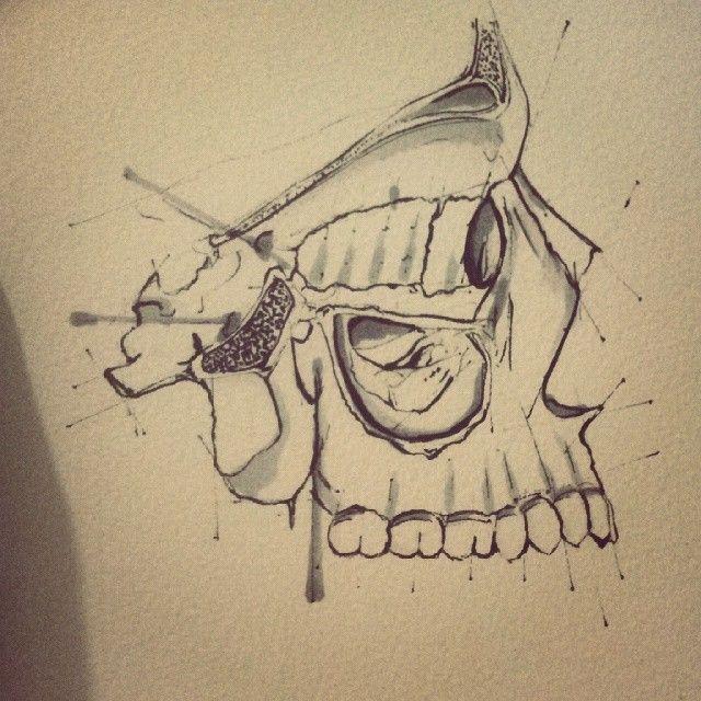 Medial Wall of right orbit and Maxilary sinus #drawing #painting #skeleton #anatomy #anatomyart #arts_magazine #sellmyart #doodle #illusration #dentist #dentiststudent #medicalart #medics #art #artist_recognition #artfido #artforsale #teeth #ukart #instaartoftheday #instaartist #support_arts