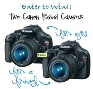 Say Cheese Giveaway: Win 2 Canon Rebel Cameras or a 100.00 Visa Gift Card!!  TheFrugalGirls.com