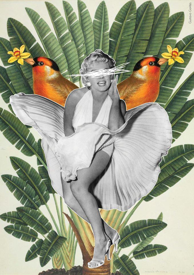 Collage 'Todo mundo é uma estrela e merece o direito ao brilho', by Gustavo Gontijo.