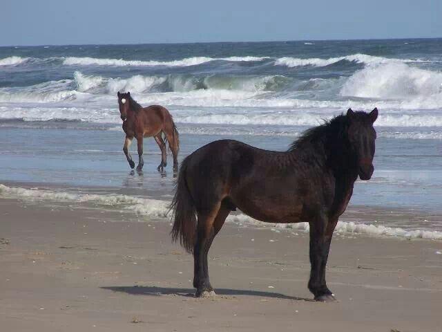 Corolla Beach, North Carolina
