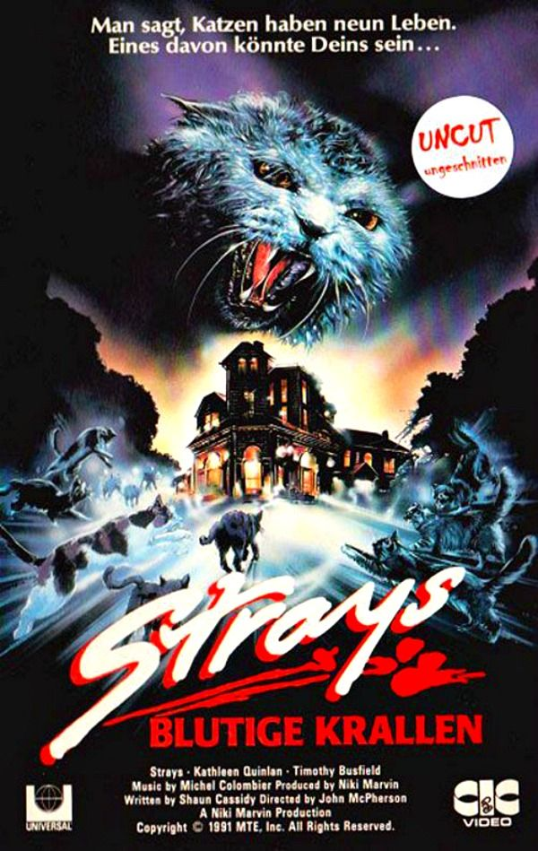 Strays (1991) is a made-for-TV horror movie, starring Kathleen Quinlan, Timothy Busfield, Claudia Christian, and a clowder of evil stray cats. Read the Strays horror movie review at http://www.celluloiddiaries.com/2017/07/strays-movie.html (Strays movie, Strays horror movie, horror movie review, evil cats, isolated house movie, Blutige Krallen, Kathleen Quinlan, made-for-TV horror movie, 90s horror movie, 1991 horror movie, horror movie with cats)