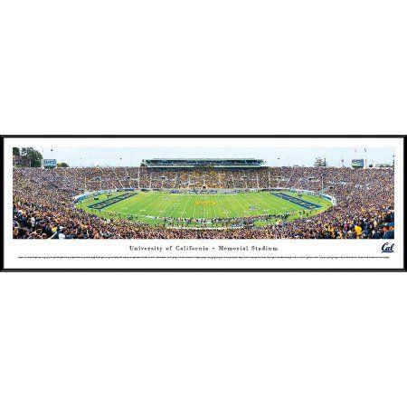 California Golden Bears Football - 50 Yard Line - Blakeway Panoramas Ncaa College Print with Standard Frame