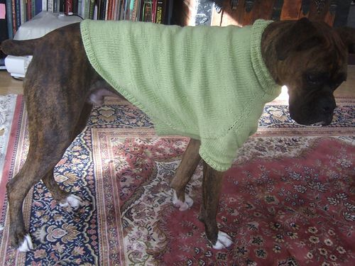 This is Max in his new sweater. His mom put a lot of time in test knitting this design for me. I just wanted to show Max off and tell his mom thank you.