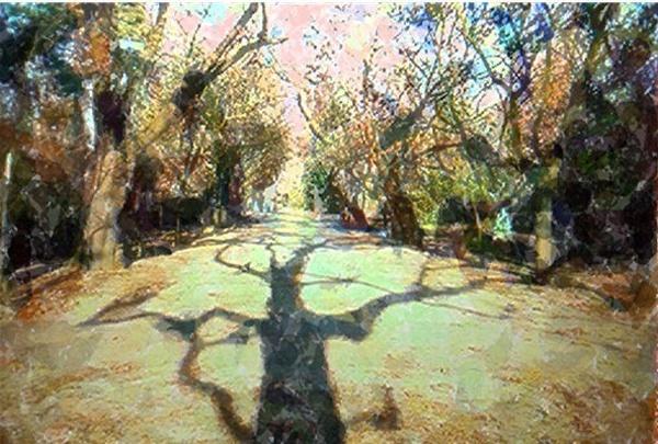 street shadows mario pompetti