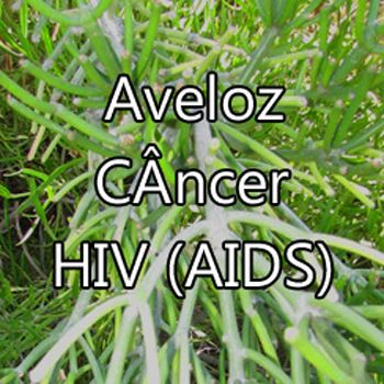 aveloz cancer hiv