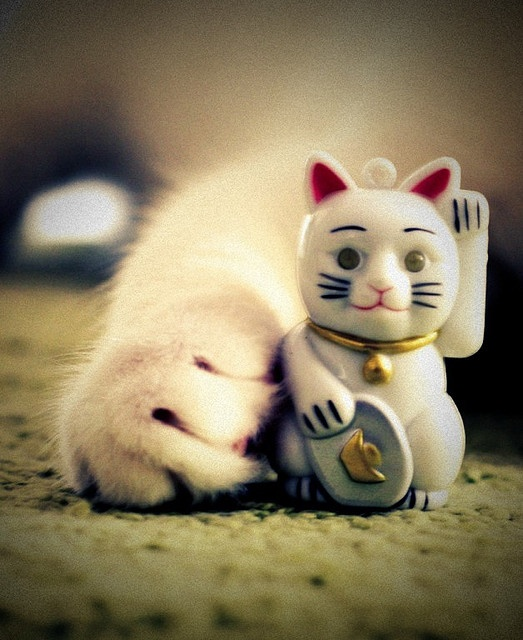 """This Japanese figure is meant to bring good luck to its owner.  It's called """"maneki-neko"""", or """"beckoning cat""""."""