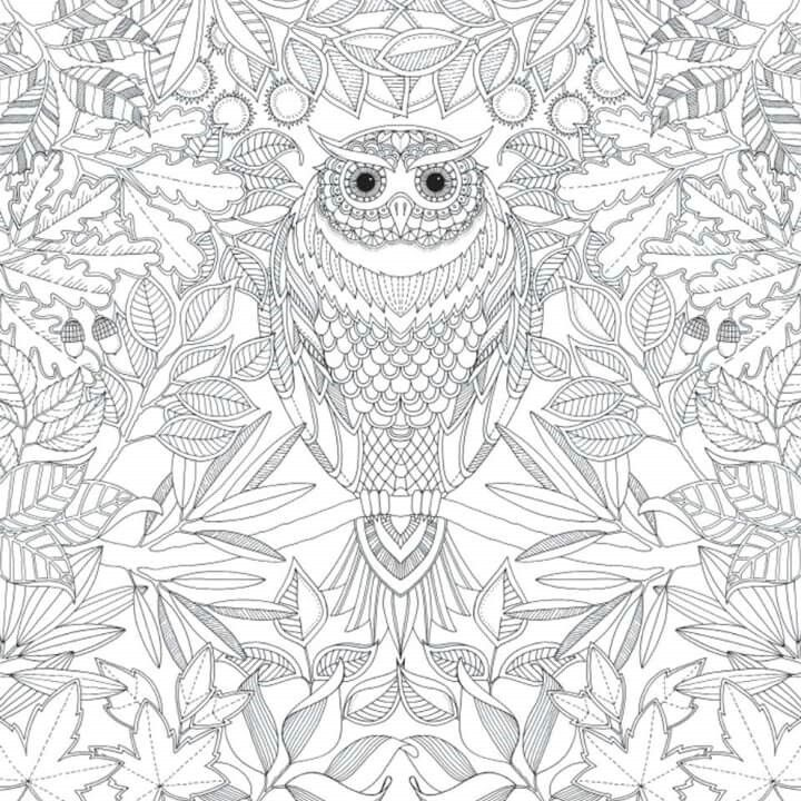 44 best Relax images by Denisa Felcmanová on Pinterest | Coloring ...