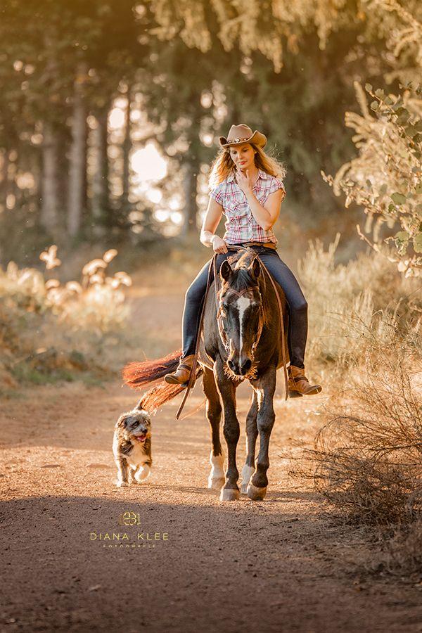 Pferdefotos – eine Auswahl von