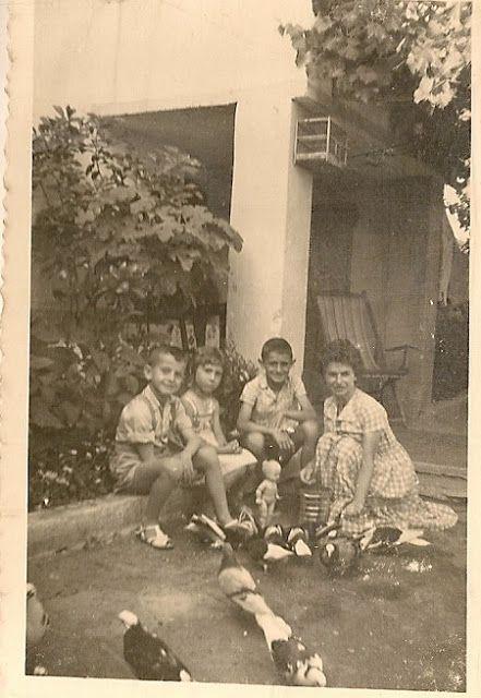 Σκέψεις: Η φιλόζωη και οι αγάπες της , Τάσος Ορφανίδης