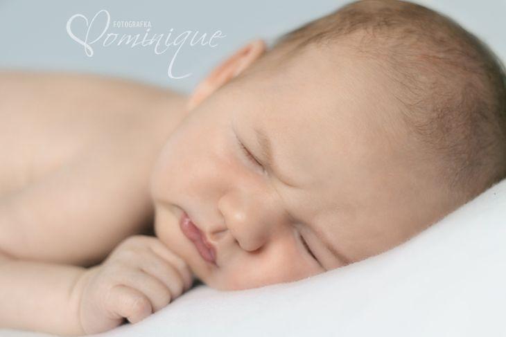 dominique.sk newborn photographer