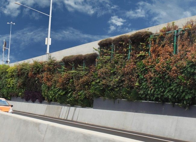 Brisbane Airport Link Green Wall - Commercial Irrigation - Installed by TIS Turf Irrigation Services, Capalaba Queensland