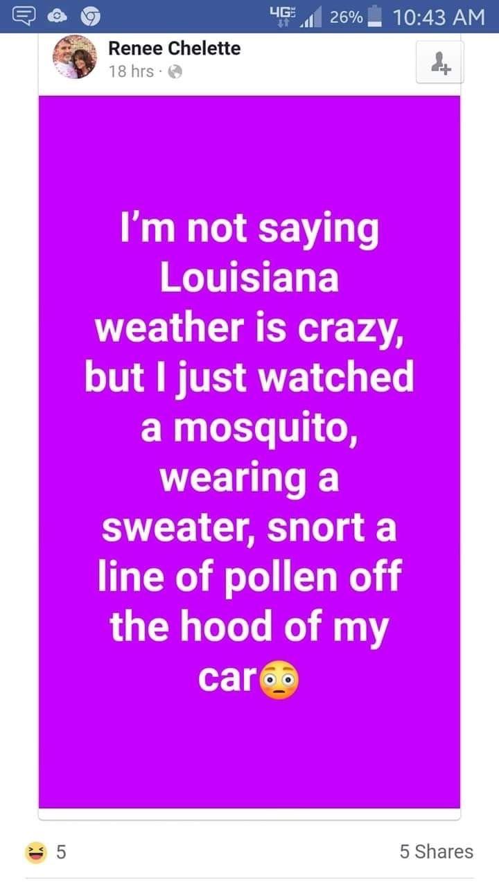 Pin By Patti Johnson Orlando On Funny Louisiana South Louisiana Sayings