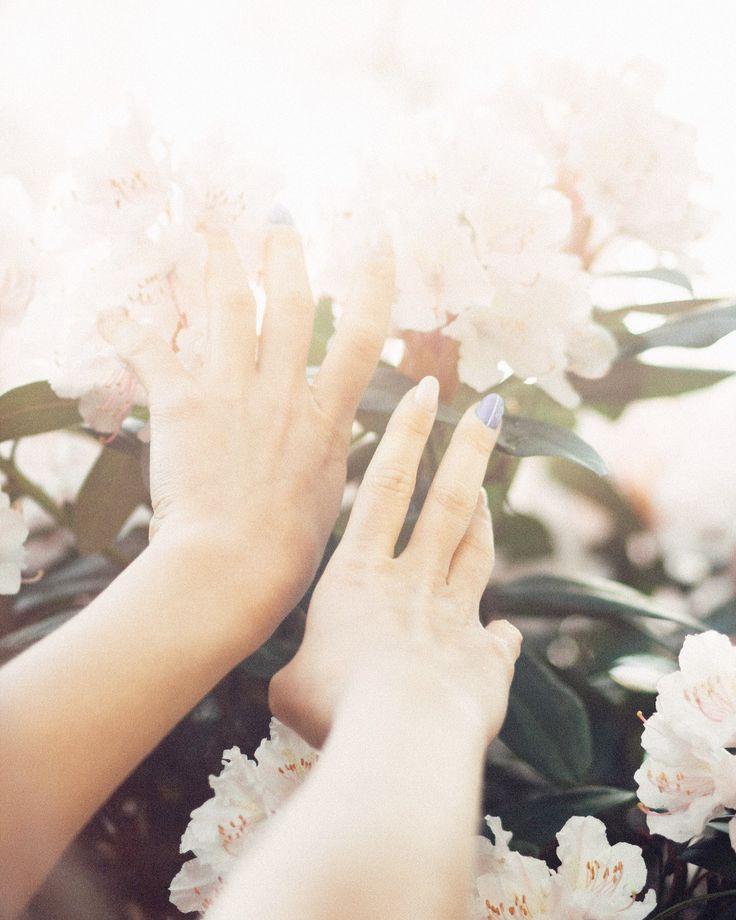 Tenderness/hands/shine/sun/flowers