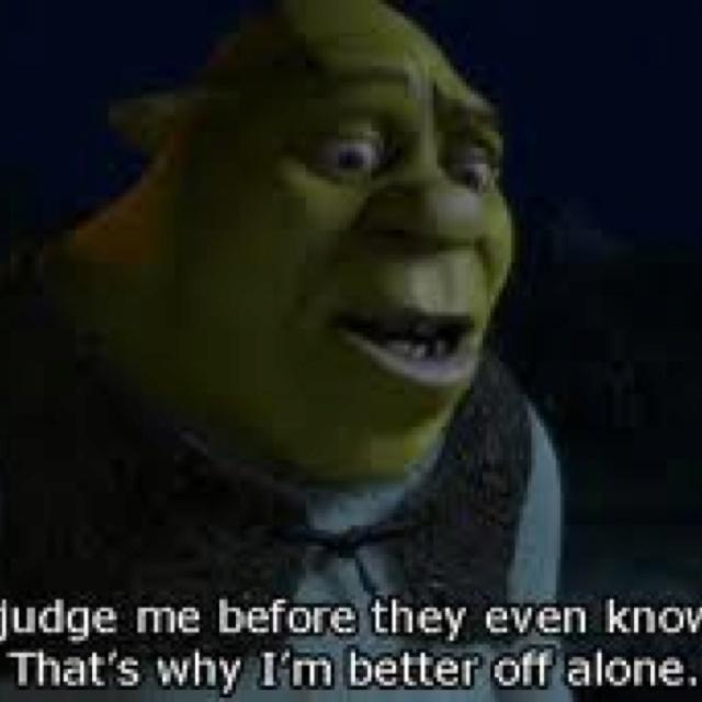 Best Shrek Quotes: 23 Best Images About Shrek ( Funny Scenes) On Pinterest