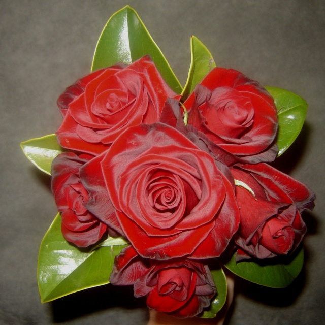 Red roses for bridesmaid... Pollinate
