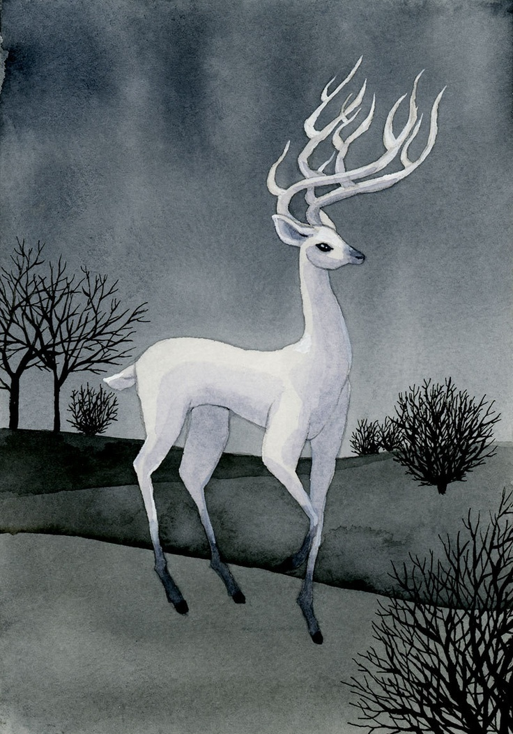 142 Best White Stag Spirit Images On Pinterest Amanda Clarke Art