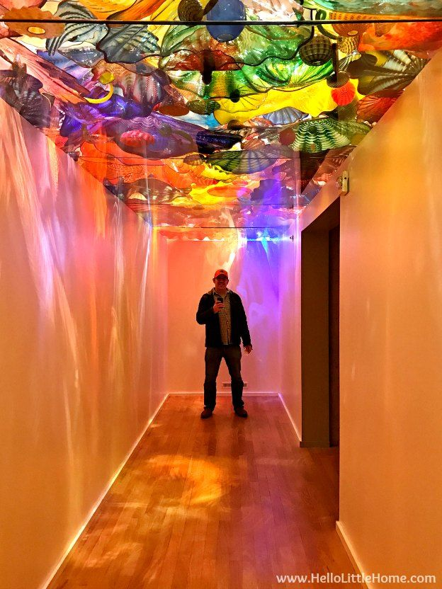 48 Hours in Oklahoma City travel guide! Take a tour of this fun, walkable city ... you won't believe all the things to do in Oklahoma City! Chihuly Exhibit at the OKC Museum of Art | Hello Little Home