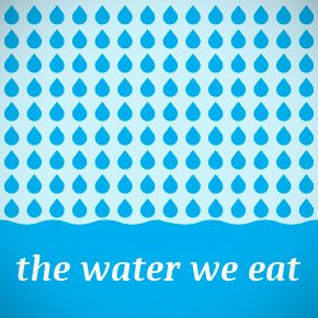 Virtual Water - Discover how much WATER we EAT everyday