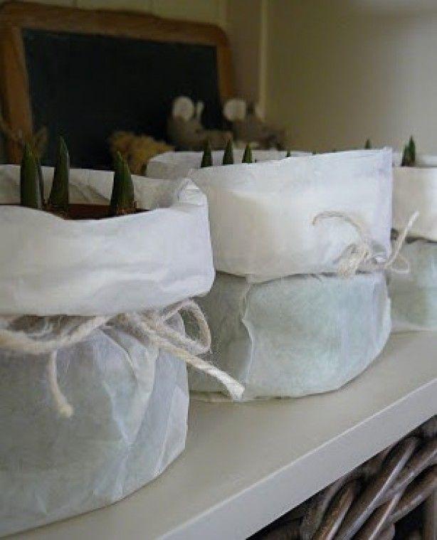 Papieren boterhamzakken mogelijk verkrijgbaar bij AH ? Of Action.