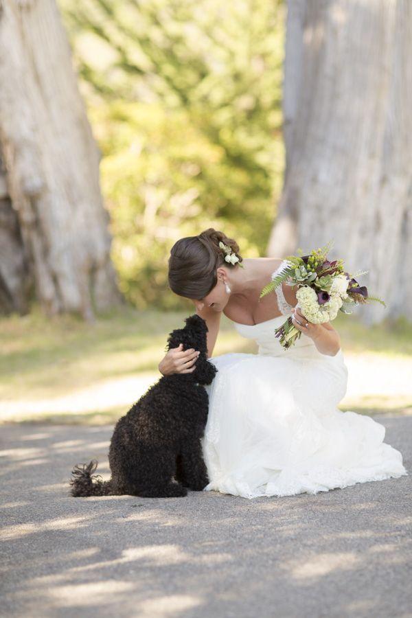 big sur wedding, dogs in weddings, lace wedding dress, outdoor wedding